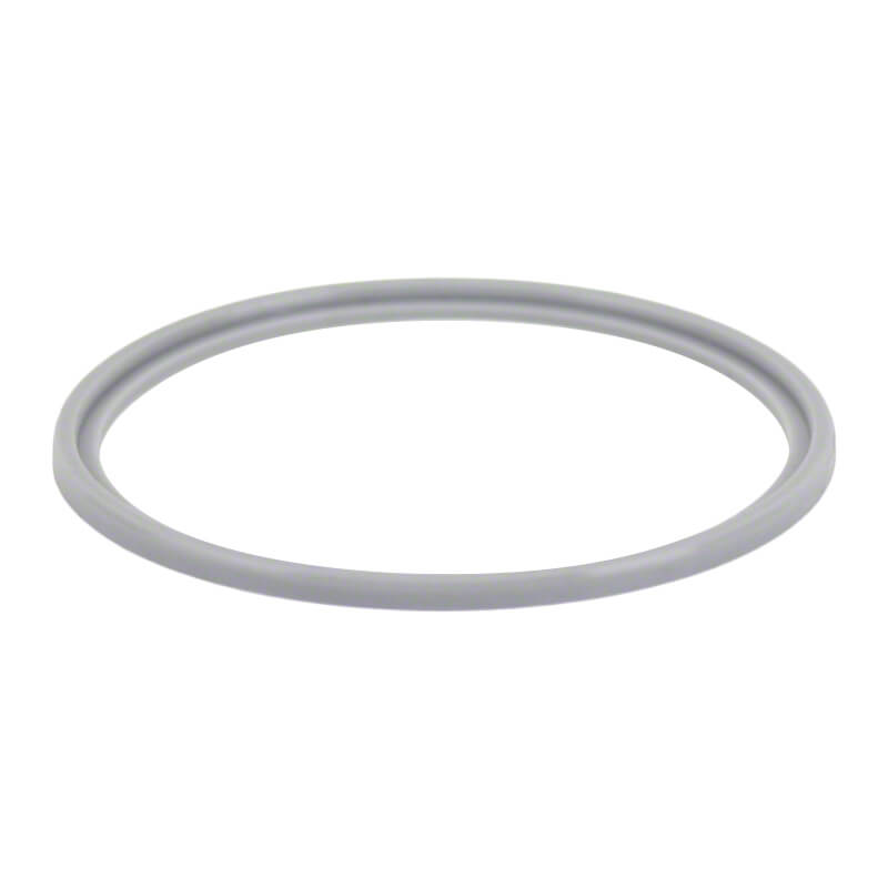AIS Auto Chlor Auto Clear Salt Cell O Ring