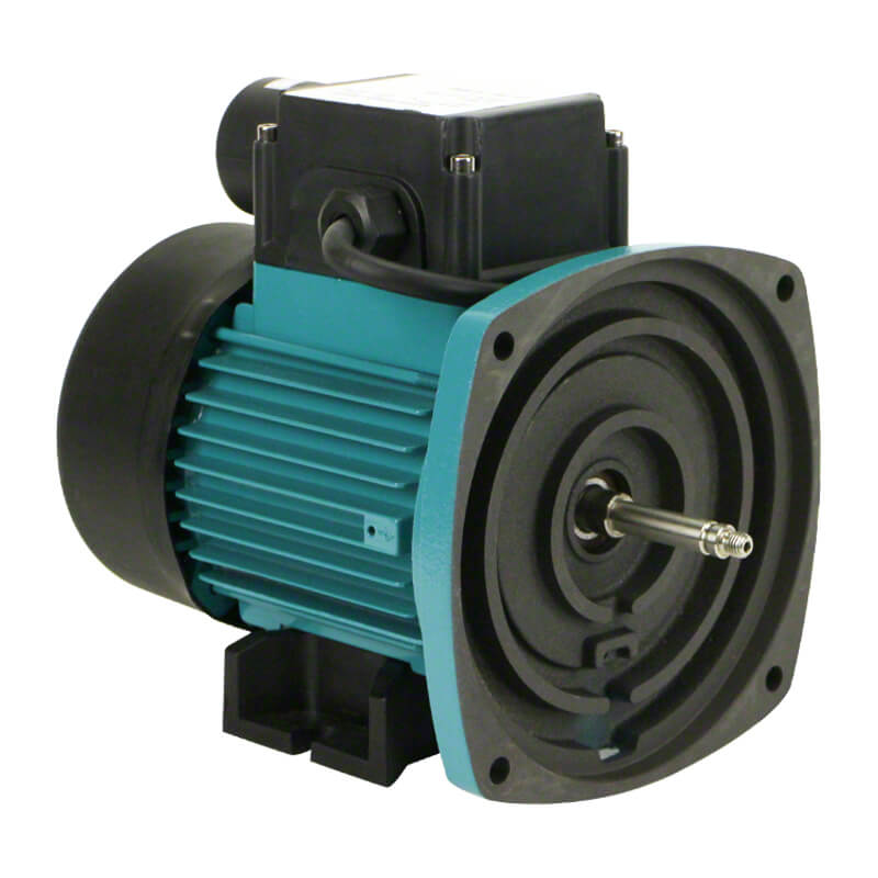 Onga Leisuretme LTP Pool Pump Motor